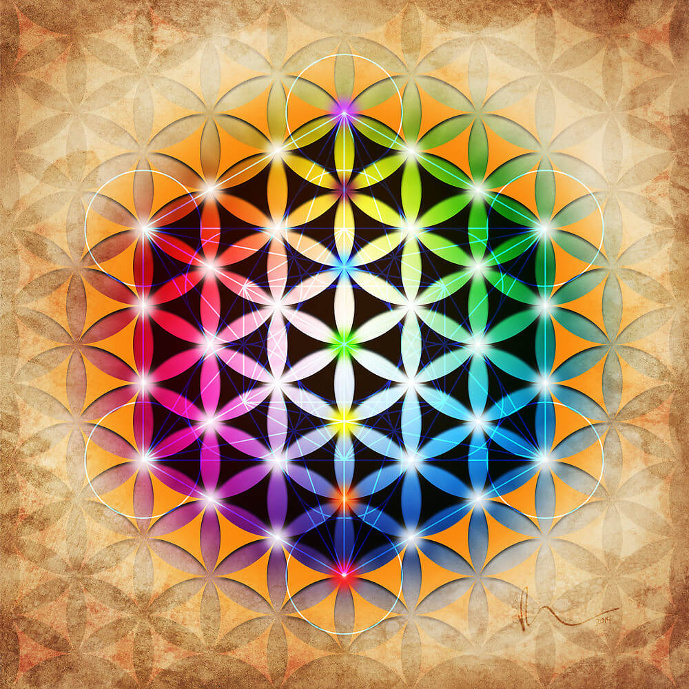 What is the Flower of Life Symbol? | aw8k